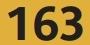 Bus 163
